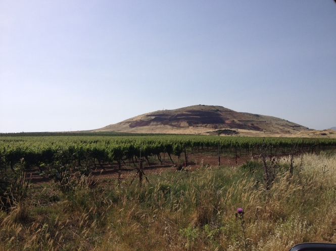 Golan Heights.