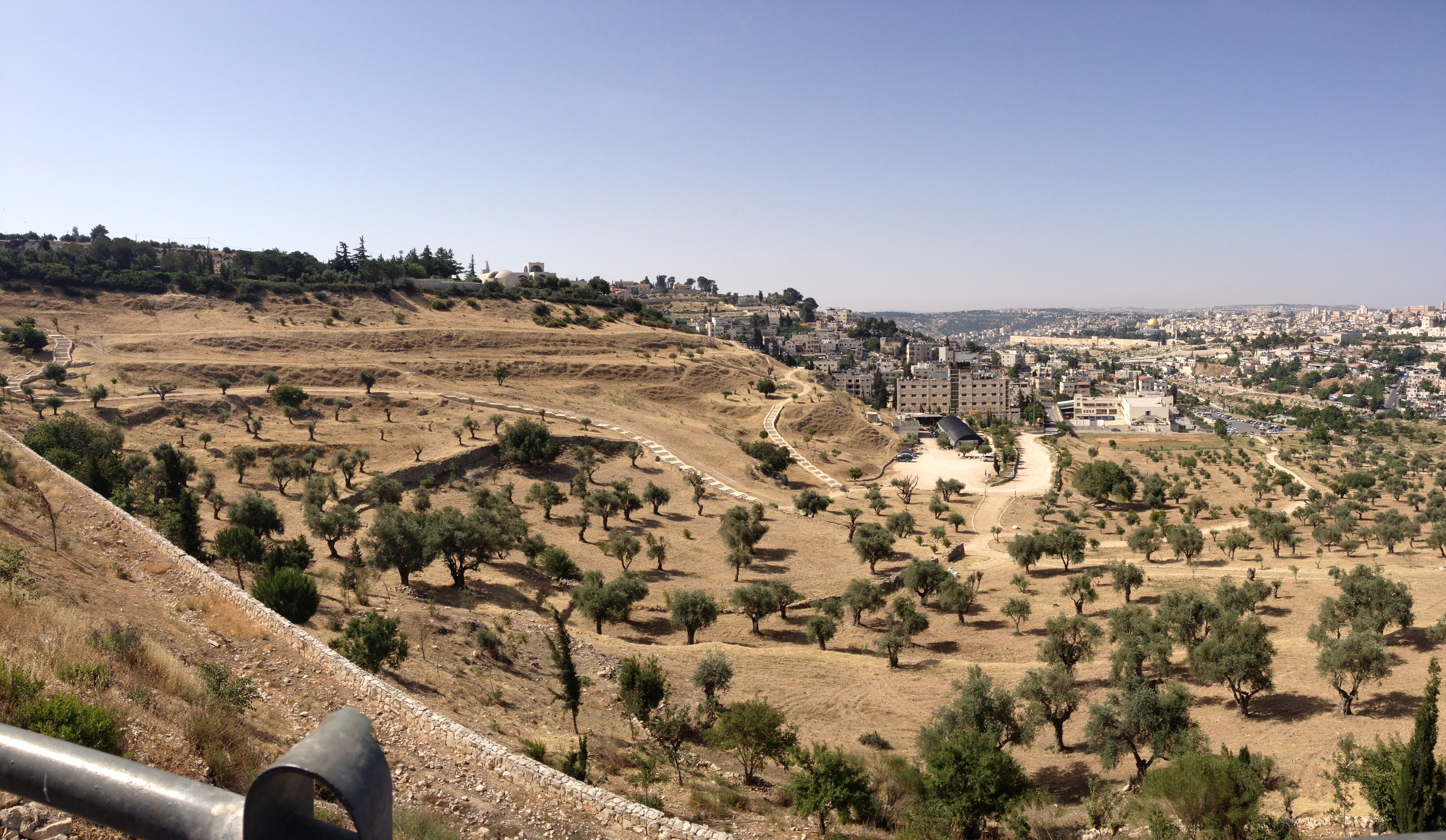 Mount of Olives from Mount Scopus.