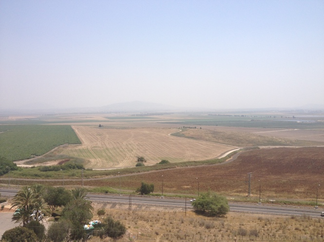 View of the Jezreel Valley from Megiddo.