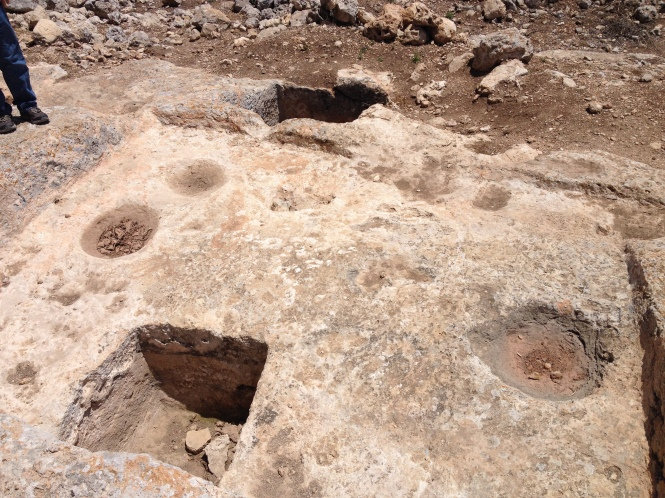 Larger winepress with smaller winepresses added later (seen in Shechem).